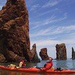 Nova Shores Sea Kayaking照片