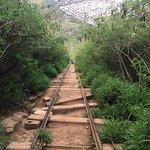 Photo de Koko Crater Railway Trail