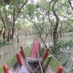 小舟からの景色。猿もみました。