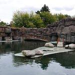 Zdjęcie Ogrod Zoologiczny Opole