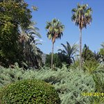 Photo of Alanya Gardens