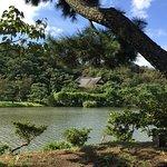 Foto de Sankeien Gardens