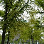 صورة فوتوغرافية لـ Berliner Dom