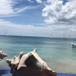Photo of Playa BarcoBar