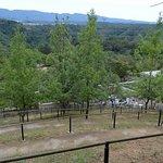 Photo of Hitokura Park