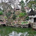 a miniature garden within a garden