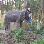 Photo de Elephant Valley Thailand