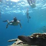Φωτογραφία: Νησί Biyadoo