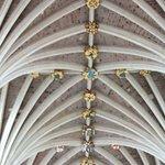 Impressive Vaulted Ceiling