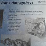 Another World Heritage Area