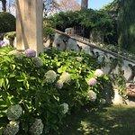 辛波乃別墅花園照片