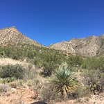 Foto Franklin Mountains State Park
