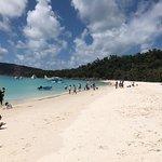 صورة فوتوغرافية لـ Reefstar Cruises