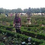 Photo de Rose Garden at the New Residenz