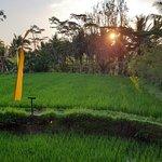 Photo de Warung Bintangbali