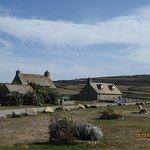 un petit coin d'Irlande dans le Cotentin