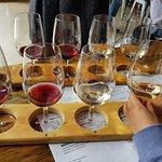 The wine tasting rack