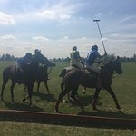 Foto de Argentina Polo Day