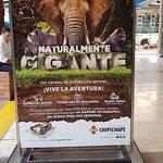 Foto de Centro Comercial Chipichape