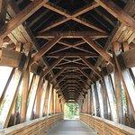 Kicking Horse Pedestrian Bridge Photo