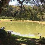 Lago de pesca esportiva
