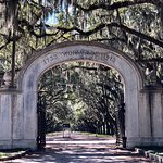 Фотография Wormsloe Historic Site
