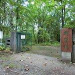 صورة فوتوغرافية لـ Midorigaoka Park