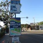 バス停もカラフルで分かりやすい