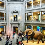 Photo de National Museum of Natural History