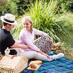 Want to know the best places to picnic?