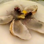 Meaty briny local oysters.
