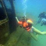 Fantastic diving!!!!