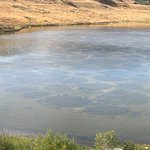Photo of Spotted Lake