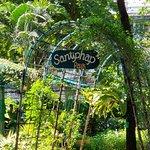 Фотография Santiphap Park (Park of Peace)