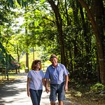 Why not do some of our 30 great walks while in the region