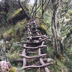 Foto de Mount Sabinyo