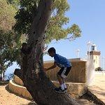 ภาพถ่ายของ Morocco Camel Trips - Day Trips
