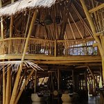 Gorgeous Bamboo structure