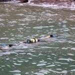 Fotografie: Triton Scuba Diving Centre Halkidiki