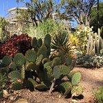 植物園照片