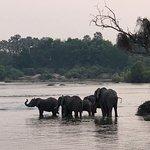 Foto de Zambezi Explorer Signature Lounge