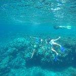 Foto van Sea Rovers