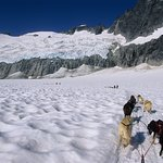 Join TEMSCO Helicopters in Juneau or Skagway for unforgettable glacier dog sledding tours