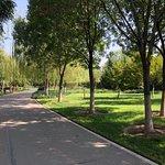 淄博植物園照片