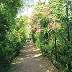 Trentham Gardens照片