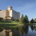 奧蘭多格蘭德湖麗茲卡爾頓酒店