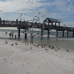 Foto di Clearwater Beach presented by Cooters