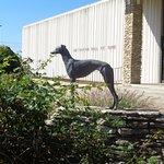 Dog statue in front of HOF