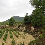 Valle de Aceniche