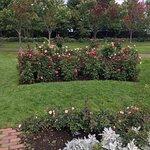 Foto de Leif Erickson Park & Rose Garden